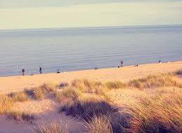 Beaches - Hook Peninsula