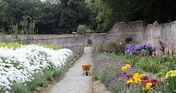 Colclough Walled Garden