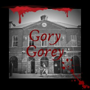 gory gorey gallivanting.ie tours