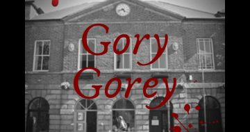 gory gorey gallivanting.ie tours