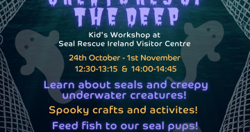 creatures of the deep seal rescue ireland