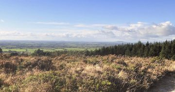 forth_mountain_wexford_trail