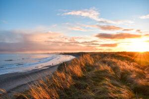 Aoife O'Connor (aoc_photos) - Ballytrent Beach
