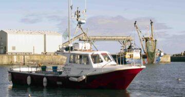 Sea Angling Kilmore Enterprise